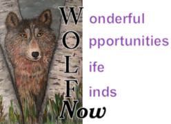 WOLF Now